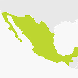 GPS Hire for Mexico